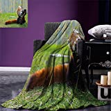 smallbeefly Africa Digital Printing Blanket Cute Red Panda on the Field Playing with Bamboo Branches Native Himalaya Mountains Summer Quilt Comforter Brown Red