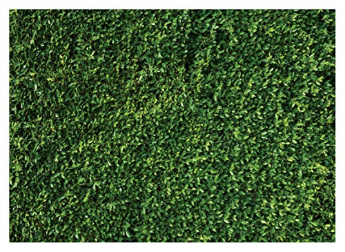WOLADA 7x5ft Green Leaves Backdrops Mmicrofiber Nature Leaf Backdrop Photography Birthday Background for Birthday Party Seamless Photo Booth Prop Backdrops 10923