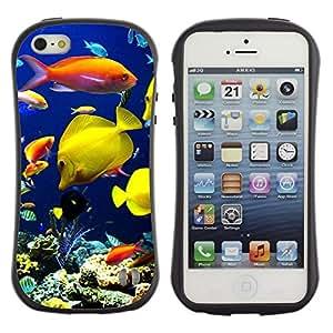 All-Round híbrido de goma duro caso cubierta protectora Accesorio Generación-I BY RAYDREAMMM - Apple iPhone 5 / 5S - Underwater Coral Reef Diving Scuba Fish