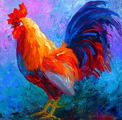 Y J ART rooster-bob Modern Canvas Wall Art for Home and Office Decoration Oil Painting Print Art Animal on Canvas, 30X30 Inch,canvas Prints Giclee Artwork for Wall Decor MRR134