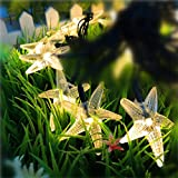 TechCode Outdoor Solar LED Light, Starfish Shape Cute Solar String Lights Outdoor LED Fairy Lighting Waterproof Lamp W/Solar Panel for Garden Backyard Party Christmas Holiday Decoration(Warm White)