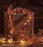Indoor LED Lighted Autumn Berry Garland 5 H x 17 W x 71 L