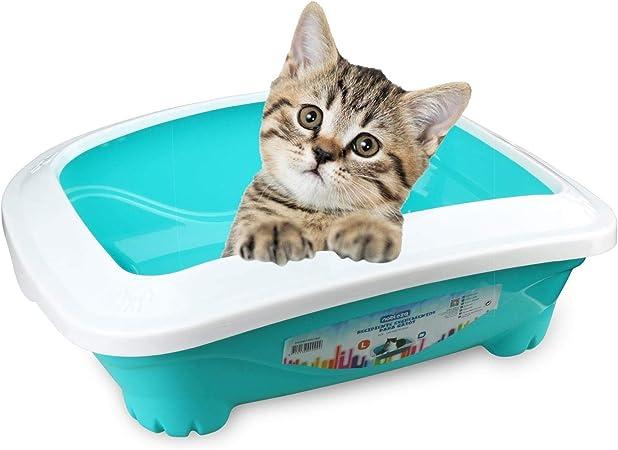 Nobleza - Bandeja higiénica para Gatos Descubierta y Rectangular ...