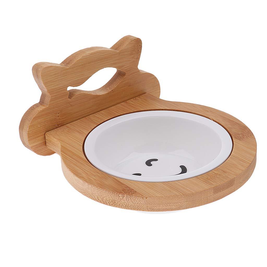 Sharplace Cuencos de Cerámica para Gatos Perros Accesorios de Mascota Fácil de Usar Elegante: Amazon.es: Hogar
