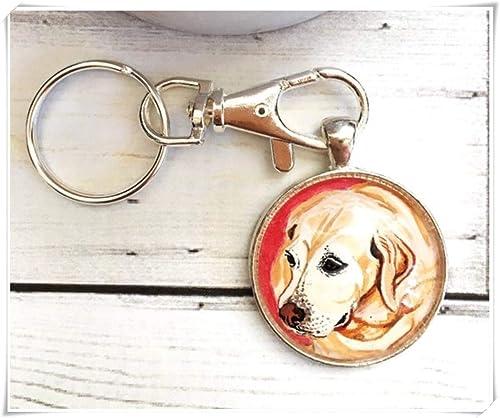 Amazon.com: Llavero para perro, joyería a la moda, llavero ...