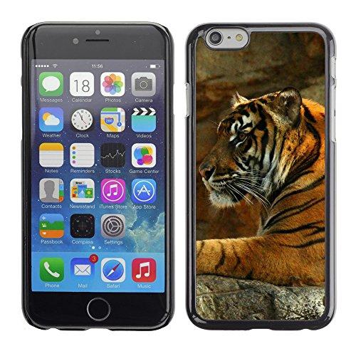 """Premio Sottile Slim Cassa Custodia Case Cover Shell // F00017372 tigre // Apple iPhone 6 6S 6G 4.7"""""""