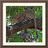 Amanti Art Cat Trees