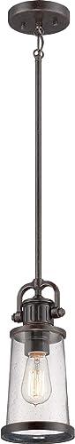 Quoizel SDN1506IB Steadman Mini Pendant Ceiling Lighting, 1-Light, 100 Watt, Imperial Bronze 12 H x 6 W