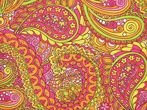 iovo120 Vera Neumann Mod Hot Pink Orange Paisley 60 x 120 Indoor Outdoor Tablecloth Spillproof (Mod Ladybug)