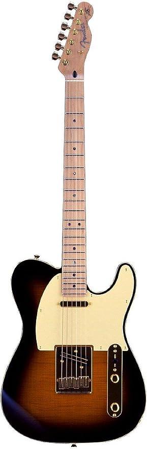 Fender 0255202532 Richie Kotzen Telecaster - Guitarra eléctrica, diseño de arce, color marrón: Amazon.es: Instrumentos musicales