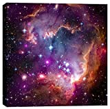 Epic Graffiti Magellanic Cloud Hubble Space Telescope Giclee Canvas Wall Art, 18 x 18, Purple