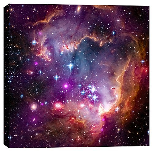 Epic Graffiti Magellanic Cloud Hubble Space Telescope Giclee Canvas Wall Art, 18 x 18, Purple by Epic Graffiti