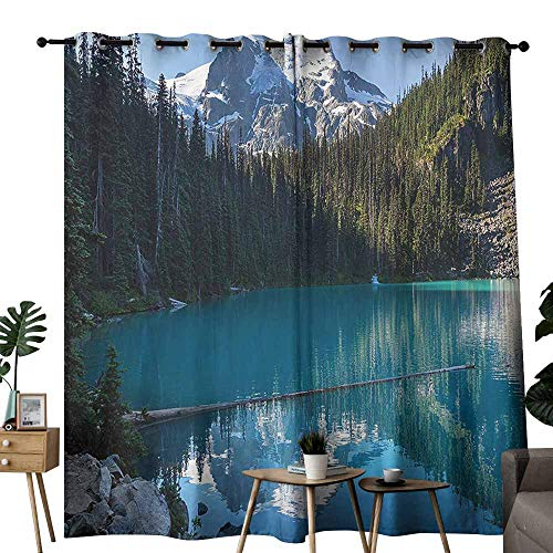 Lake House Decor Curtain for Kids Lake in Northern Canada with Slim Trees and Snowy Frozen Mountain Novelty Photo Privacy Protection W108 x L96 Blue White Green -