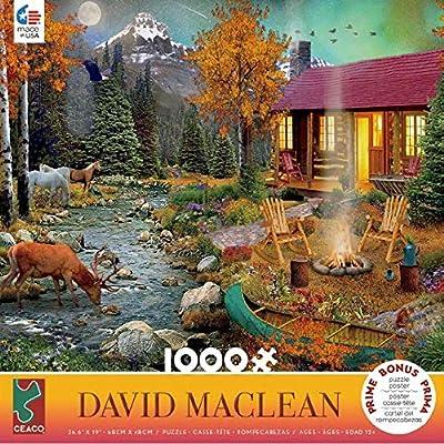 David Maclean Aurora Lights Puzzle - 1000Piece: Toys & Games