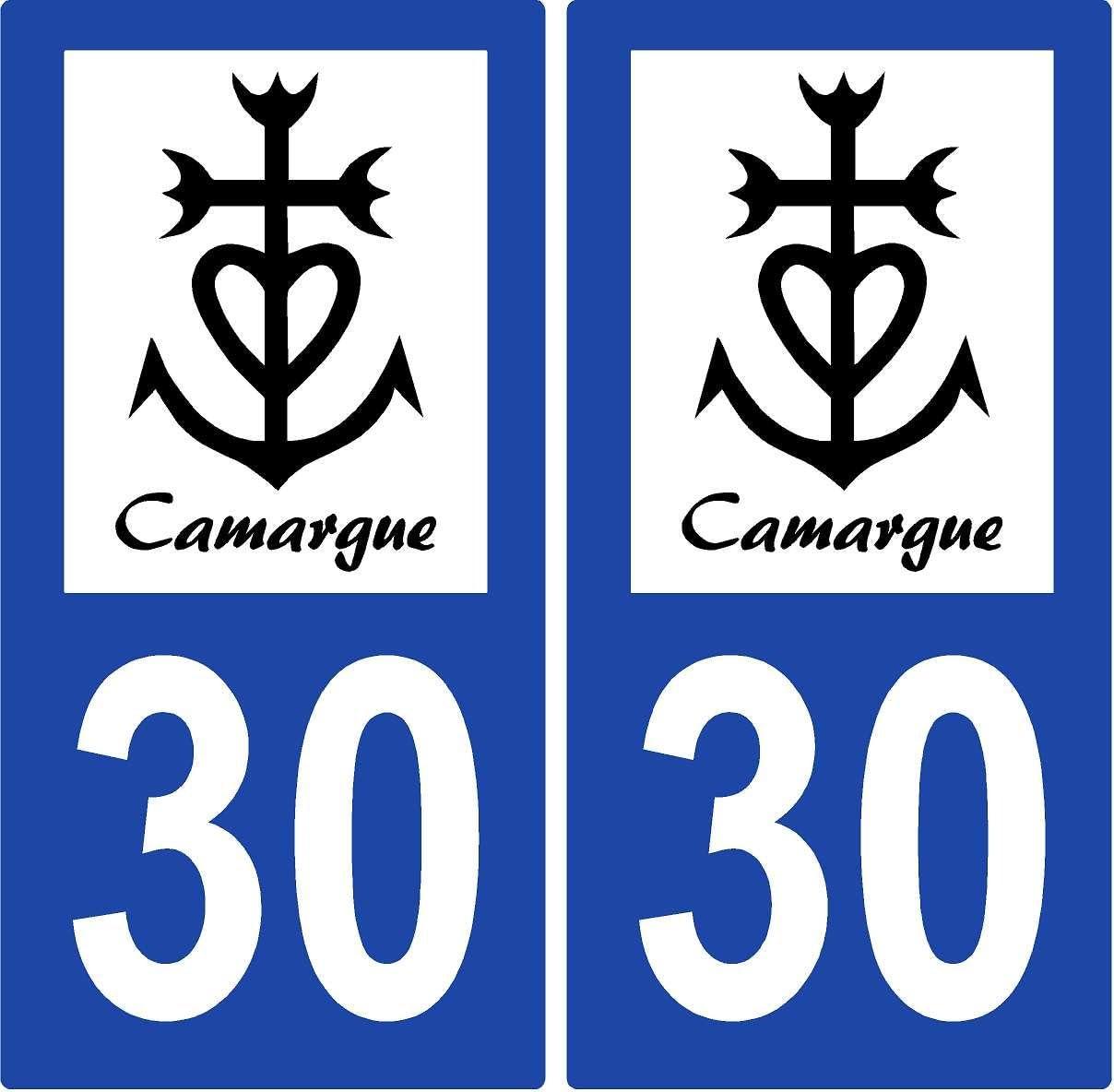 2 Pegatinas de placa de matrícula Auto 30 Cruz Camarguaise: Amazon.es: Oficina y papelería