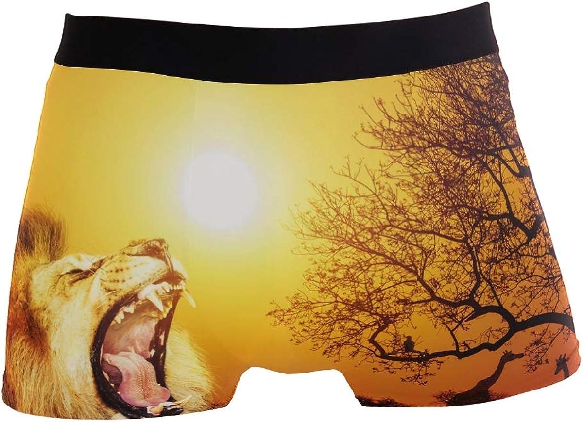 ZZKKO Lion Mens Boxer Briefs Underwear Breathable Stretch Boxer Trunk with Pouch S-XL