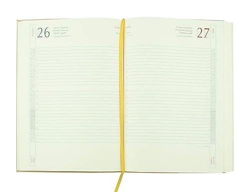 Agenda diaria de reemplazo - beige 2019-15x21 o 17x24 ...