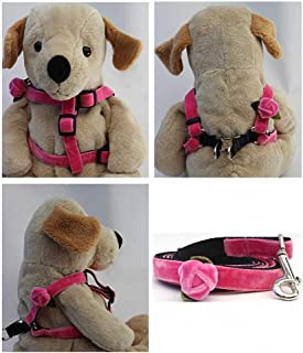 "product image for Diva-Dog 'Rosebud' Custom 5/8"" Wide Velvet Dog Step-in Harness with Plain or Engraved Buckle, Matching Leash Available - Teacup, XS/S"