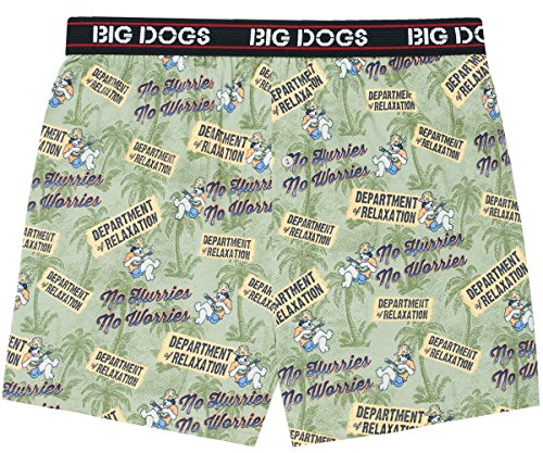 Big Dogs No Hurries Printed Knit Boxers 2X Sage