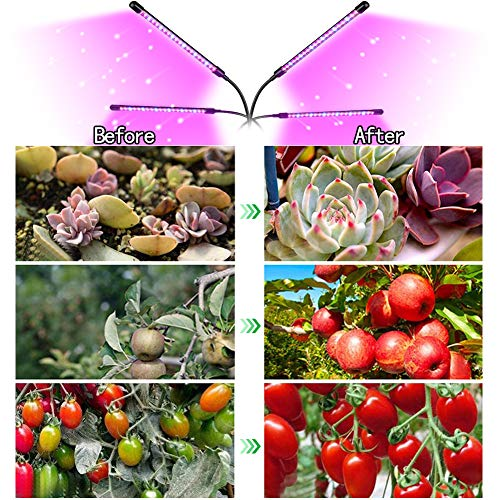 【New Upgrade】LED Grow Light,Kavai 4-Head LED Grow Light with Tripod Stand for Indoor Plants,80 LED Full Spectrum Floor Grow Lamp with remote Controller, 8 Dimmable Levels,4/8/12H Timer (Tripod Adjustable 11-70 inch)