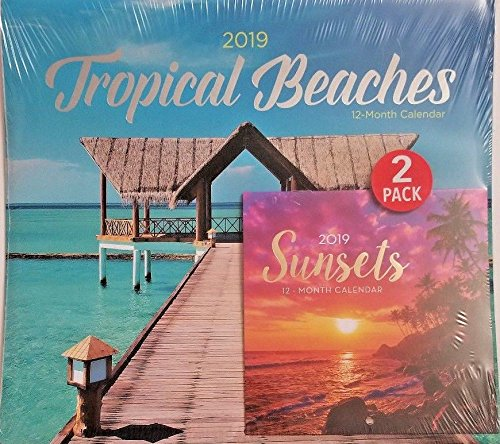 2 Pack of 12 Month 2019 Wall Calendars Tropical Beaches Sunsets