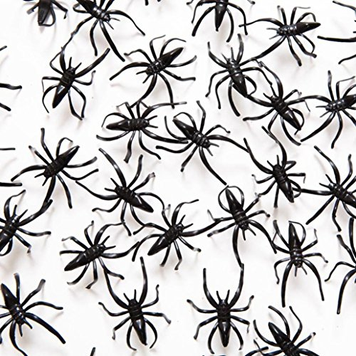 [Iuhan 144PCS Spider Halloween Party Decoration Haunted House Prop Indoor Outdoor Wide (Black)] (Animated Mummy Head In A Jar Prop)