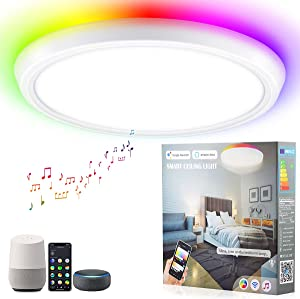 Ansody Smart LED Ceiling Light Flush Mount, WiFi Voice Control 16 Million RGB Color Changing, Light Fixtures Ceiling Mount with Alexa Google Home, 35W 12 Inch, for Bedroom, Living Room