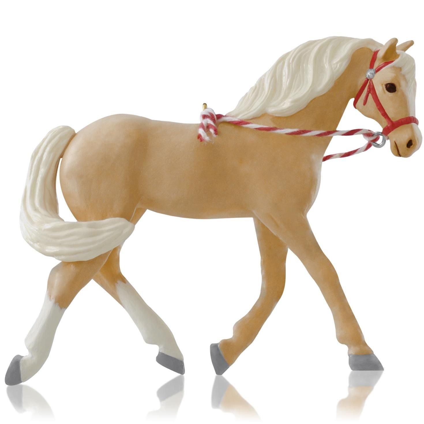 1 X Dream Horse -