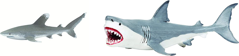 Safari Ltd. Wild Safari Sea Life - Oceanic Whitetip Shark Toy Figurine Bundled with Safari Ltd Wild Safari Prehistoric World Collection - Hand Painted Megalodon- Quality Construction- for Ages 3+