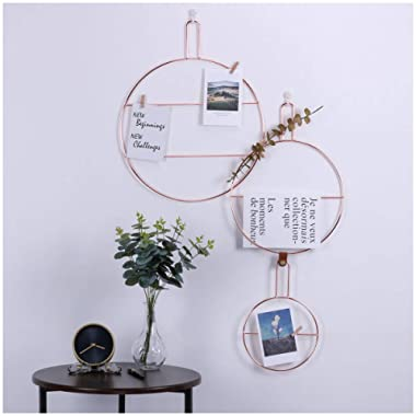 Simmer Stone Rose Gold Wall Decor, Round Wire Wall Mount Photo Hanging Display, Creative DIY Wall Decor, Set of 3 Different Size