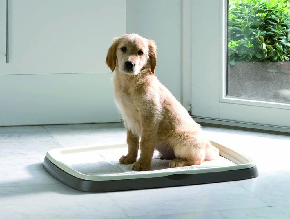 Savic Puppy Trainer Refill 30 pastiglie di grandi dimensioni 60 x 45 cm