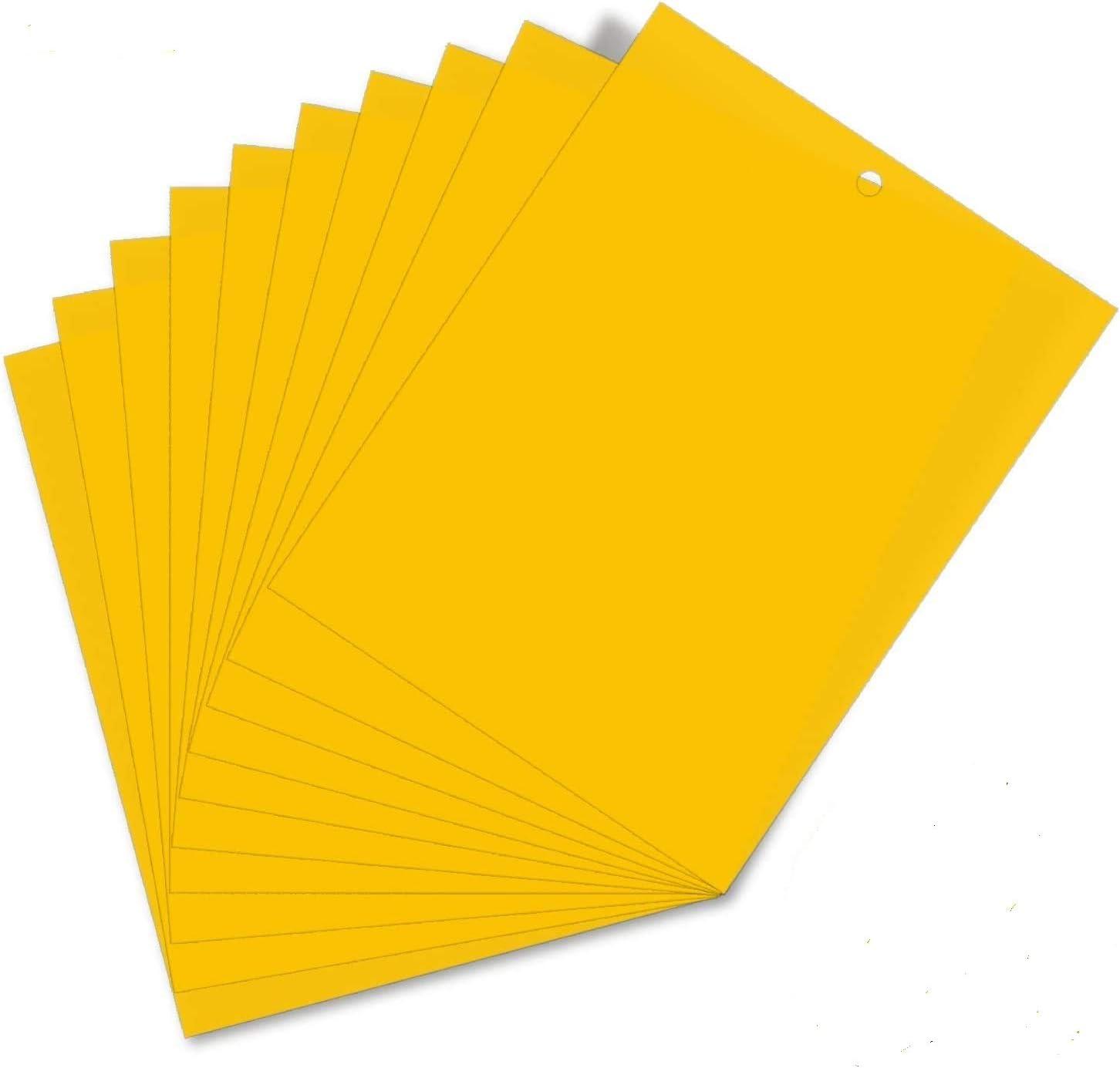 HellDoler Trampas de Insectos de Doble Cara,Trampas Pegajosas Papeles Pegajosos Amarillos Trampas de Moscas para Moscas,Pulgones,Mineros de Hojas,Polillas,15x20 cm (30PCS)