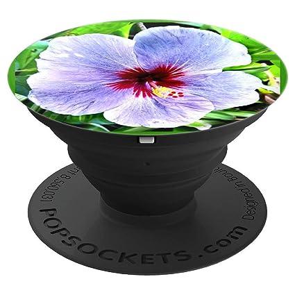Amazoncom Purple Hibiscus Flower Tropical Beauty Popsockets