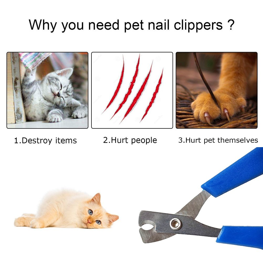 Pet Dog Cat Nail Clippers Best Cat Dog Toenail Clippers Nail