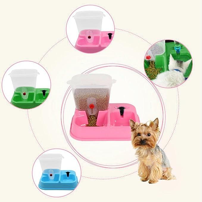 Gugutogo Diseño práctico Inicio Automático Pet Cat Dog Feeder Food Drink Dispenser (Color: Azul): Amazon.es: Productos para mascotas