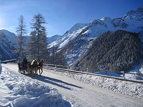 - Home Comforts Acrylic Face Mounted Prints Winter Coach Carriage Rides Solda Snow Ortler Print 18 x 24. Worry Free Wall Installation - Shadow Mount is Included.
