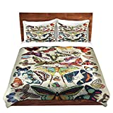 DiaNoche Designs Madame Memento-Butterflies Collection Brushed Twill Home Decor Bedding Cover, 8 King Duvet Sham Set