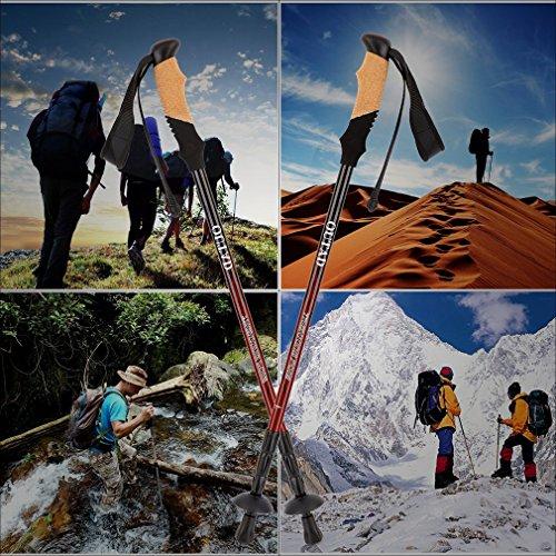 IUcar Walking Poles Hiking Sticks Aluminum Collapsible Anti-Shock Trekking Sticks With Twist-Locks for Travel Mountaineering