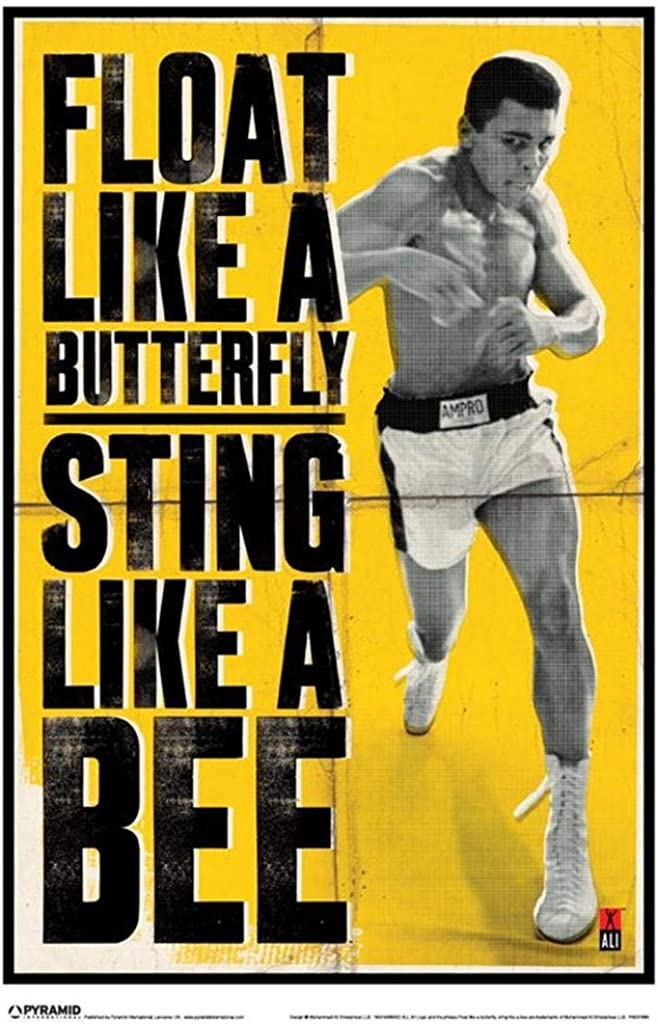Pyramid America Muhammad Ali Float Like A Butterfly Sting Like A Bee Boxing Poster 11x17 Float Like A Butterfly