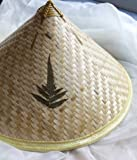 Vietnamese Traditional Hat - Conical Hat (Non La) with Ferns - by VietnameseArtwork.com