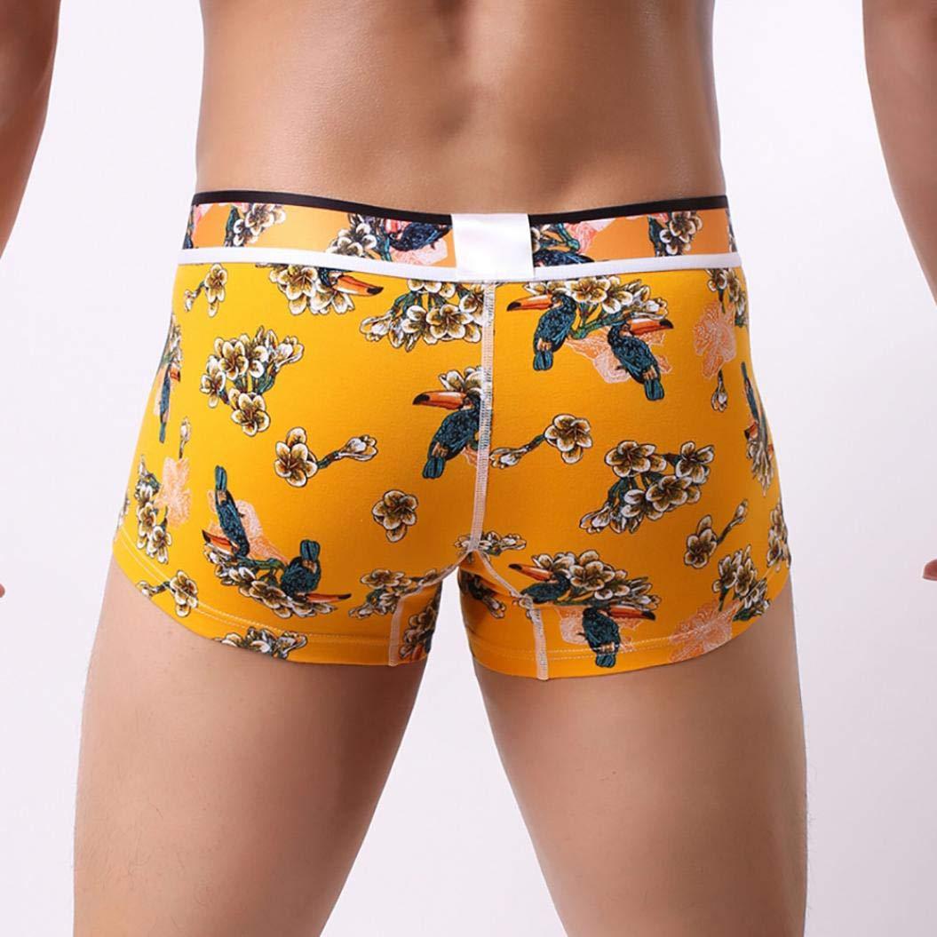 Ropa Interior, BBestseller Pantalones Cortos Absorbente para Hombre absorción Normal Plus Bóxer para Hombre: Amazon.es: Ropa y accesorios