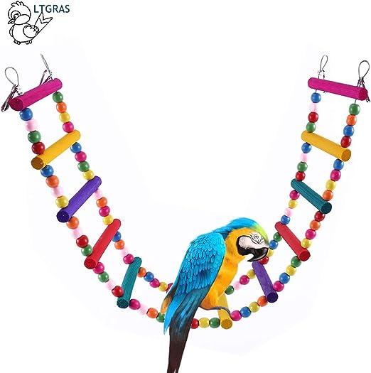 littlegrass pájaro Papagayo Juguete, Periquitos cacatúas, Mascotas pájaro Papagayo Juguete Swing häng Extremos Escalera 85 cm: Amazon.es: Productos para mascotas