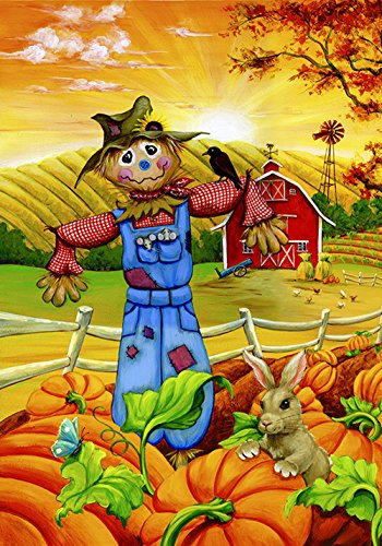 Toland Home Garden Scarecrow Buddies 28 x 40 Inch Decorative