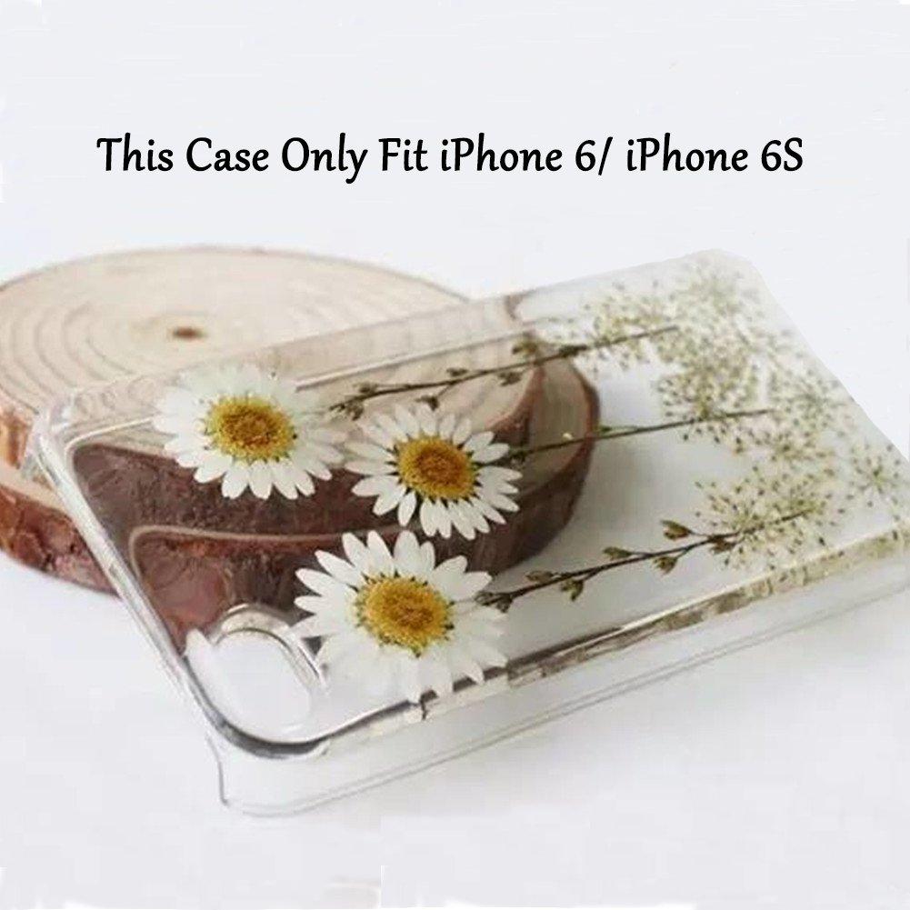 Amazon Rebbygena Daisy Real Pressed Flower Iphone 6 Case