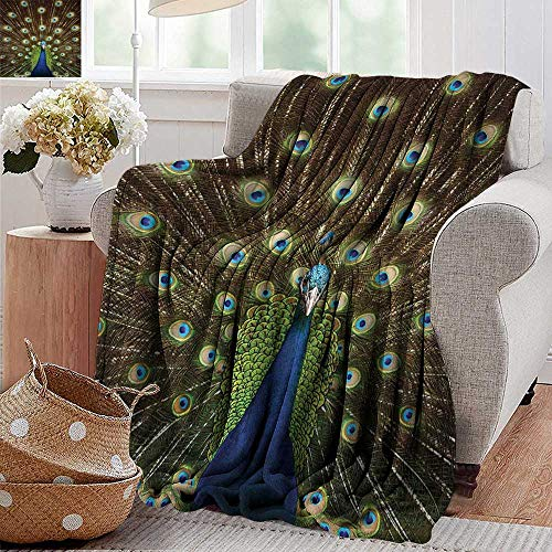 Weighted blanket for kids,Peacock,Portrait of Peacock with Feathers Out Vibrant Colors Birds Summertime Garden Image Theme,Long Navy Green,Weighted Blanket for Adults Kids, Better Deeper Sleep 60