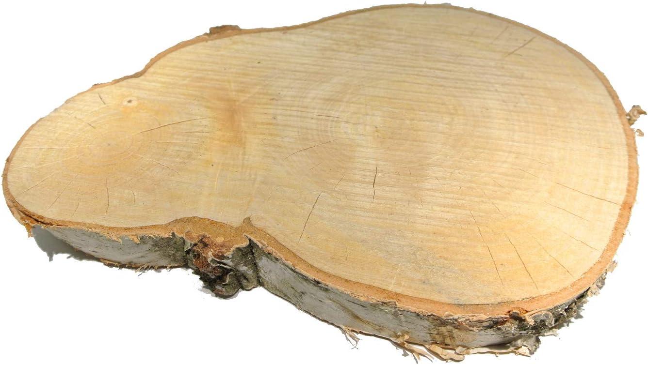 /Ø 20 cm 25 cm x 3,5 cm Schreiber Disques d/écoratifs en Bouleau 1 Disque en Bois