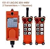 Hoist Crane Wireless remote control Double