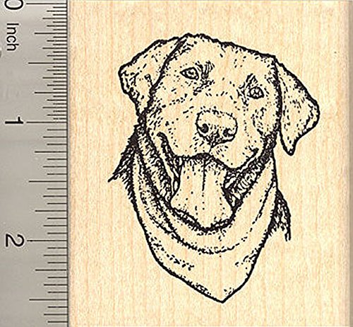 Labrador Retriever Rubber Stamp, Black Lab Dog