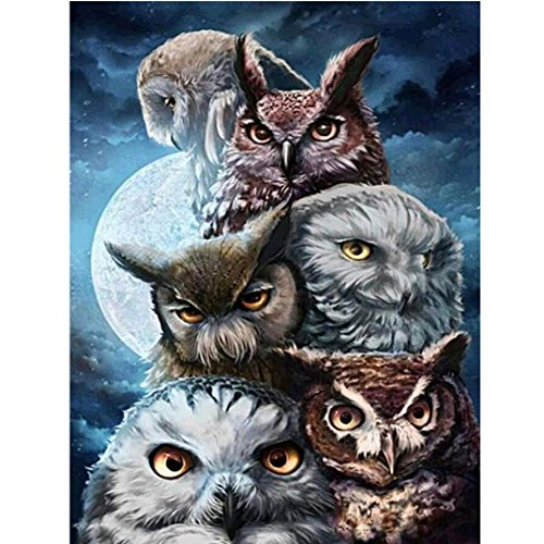 Diamond Painting Kits For Adults,DIY 5D-Monn Owl-Crystal Rhinestone Diamond Embroidery Paintings Pictures Arts Craft for Home Wall Decor