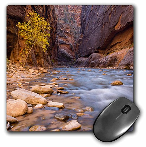 3drose-the-narrows-of-the-virgin-river-utah-zion-national-park-mouse-pad-8-by-8-inches-mp-206920-1